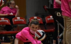 Photo Gallery:  Volley For A Cure Pink Out